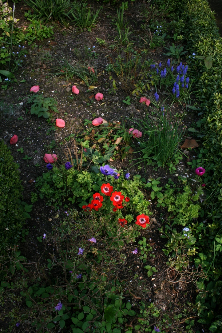 Flower Garden Epyfit
